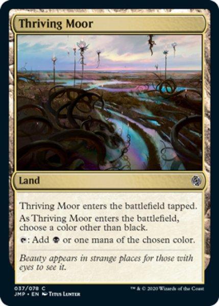 画像1: 英(JMP)土地 興隆する湿地帯(C) (1)