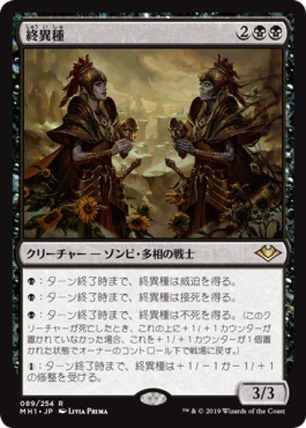 画像1: (MH1)黒 終異種(R) (1)